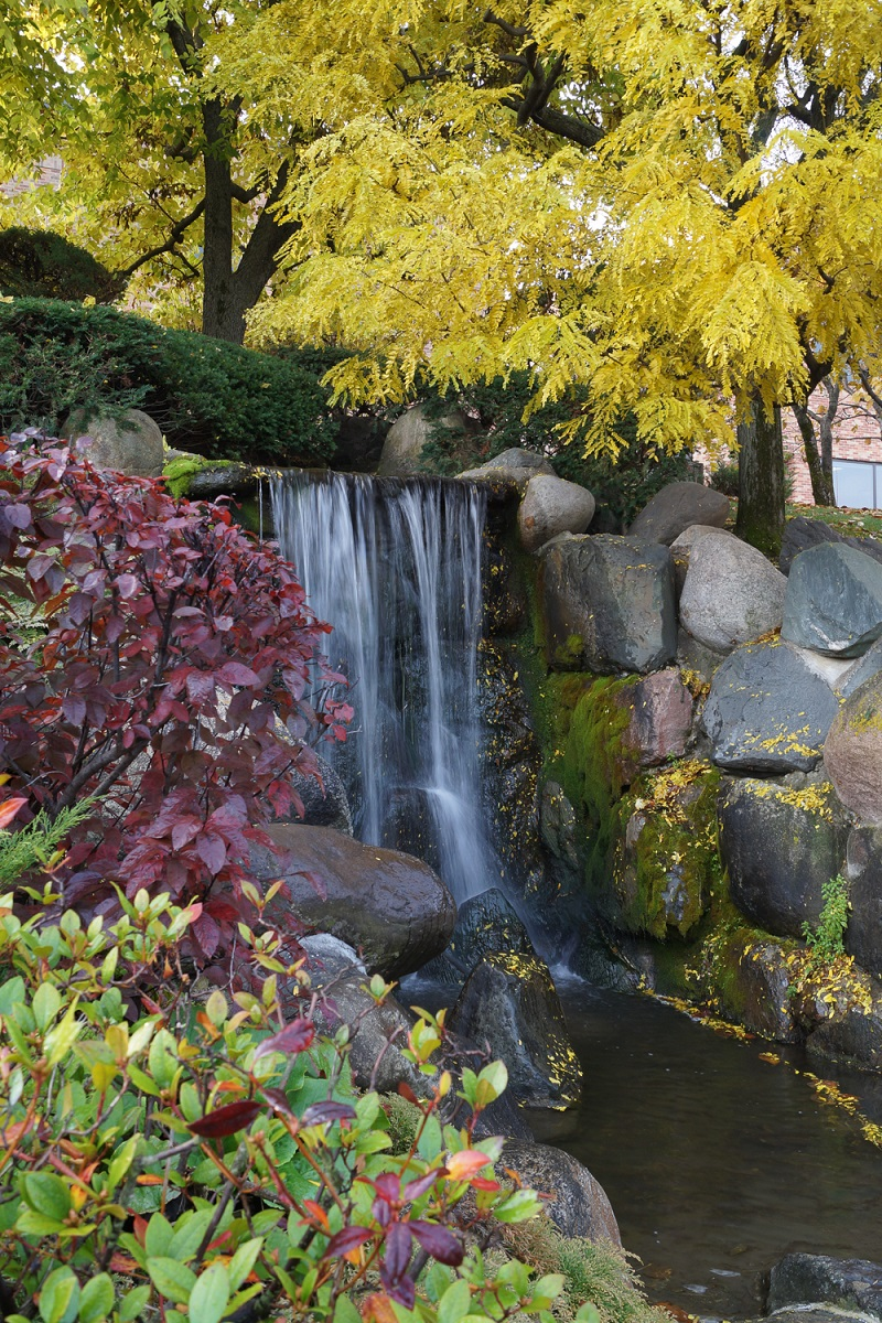 The Japanese Garden Normandale Community College