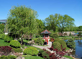 Normandale Japanese Garden to be featured in NAJGA Skills Workshop and Garden Tour